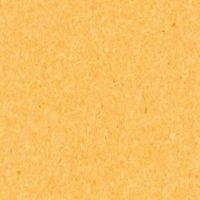 726-074 corn yellow